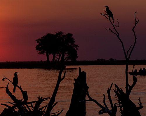 Victoria Falls & Chobe-floden - www.rejsecenterdjursland.dk