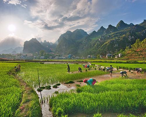 Rejse til Vietnam - www.rejsecenterdjursland.dk