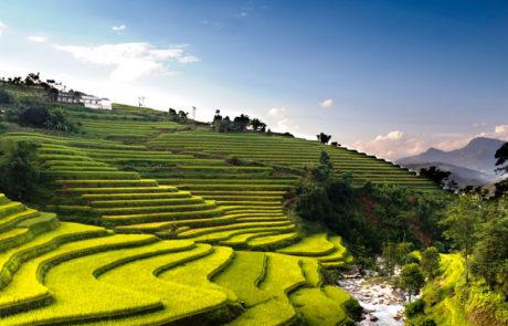 Asien | Rejser til Vietnam og Cambodia med Rejsecenter Djursland