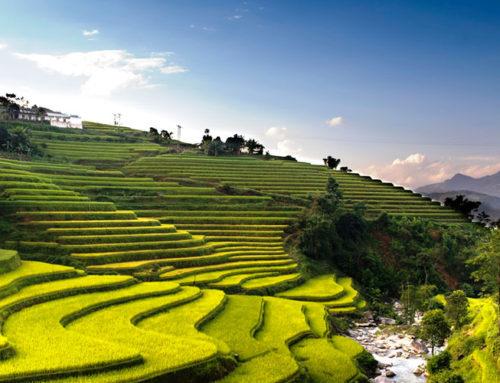 Vietnam fra nord til syd