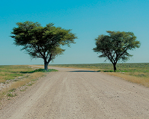 Namibia www.rejsecenterdjursland.dk