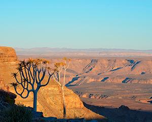 En rejse fra Sydafrika til Zimbabwe - www.rejsecenterdjursland.dk