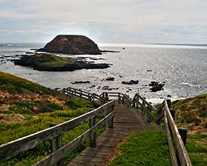 Australiens østkyst -www.rejsecenterdjursland.dk