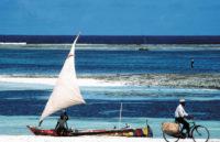 Diani Beach og Kenya kyst