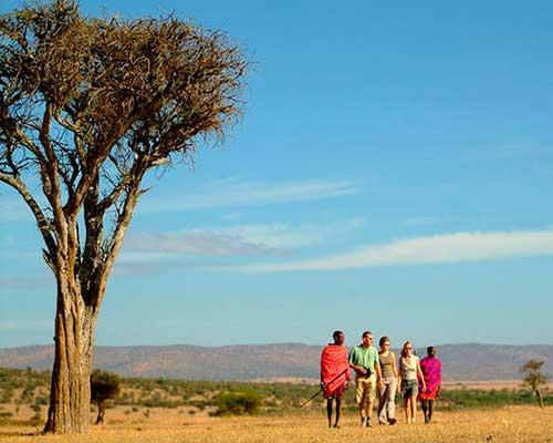 Guidet tur på savannen - www.rejsecenterdjursland.dk