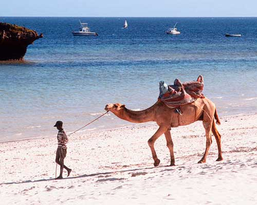 Badeferie i Kenya - www.rejsecenterdjursland.dk
