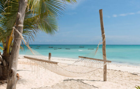 Østafrika | Zanzibar | Badeferie | Rejsecenter Djursland | www.rejsecenterdjursland.dk