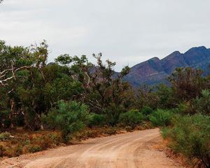 autocamper i outbacken - www.rejsecenterdjursland.dk