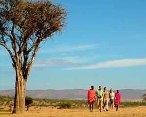 Guidet safari i Selenkay | www.rejsecenterdjursland.dk