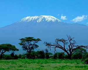 Safari i Afrika og camp i Kenya | www.rejsecenterdjursland.dk