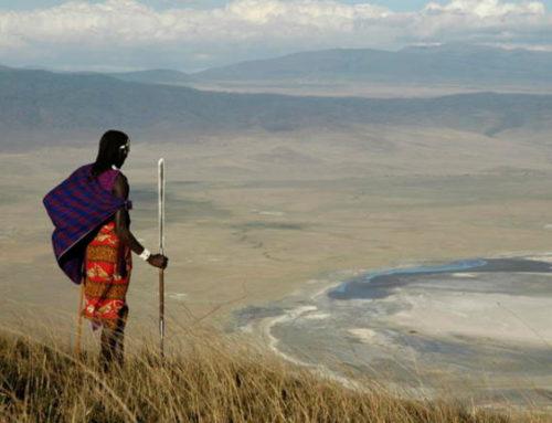 Klassisk safari i Tanzania