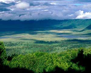 Klassisk safari i Ngorongoro-krateret - www.rejsecenterdjursland.dk
