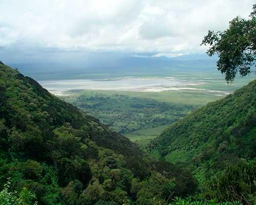 Klassisk safari i Tanzania - www.rejsecenterdjursland.dk
