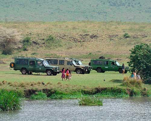 Safari ved Lake Manyara - www.rejsecenterdjursland.dk
