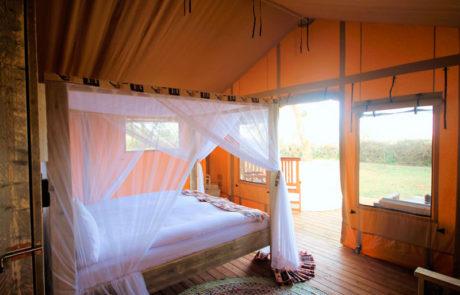 Østafrika | Glamping og safari - Rejsecenter Djursland