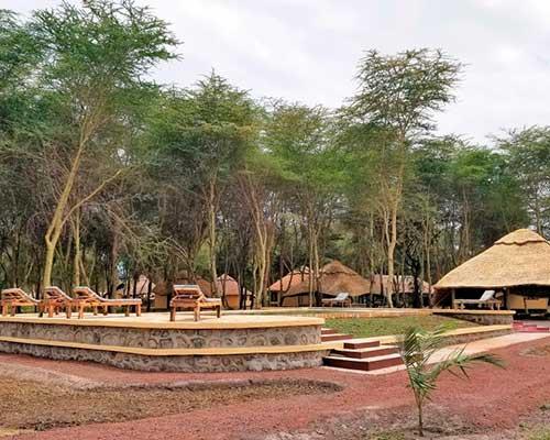 Safari på Serengeti   www.rejsecenterdjursland.dk