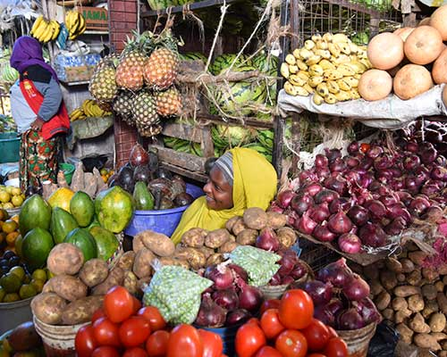 En rejse i Tanzania - Mama Leo Lodge - www.rejsecenterdjursland.dk