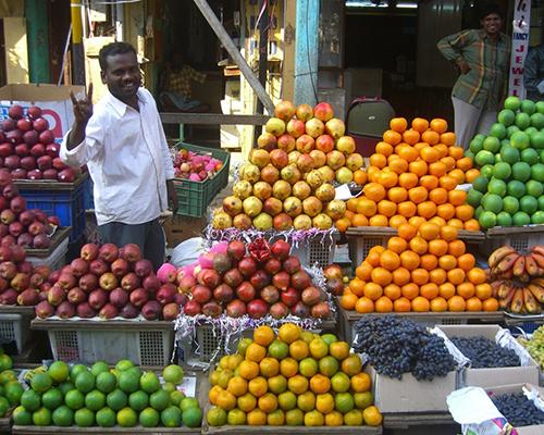 Kerala, Sydindien - www.rejsecenterdjursland.dk