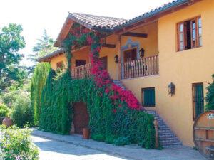 Vin og kulturrejse til Chile og Argentina