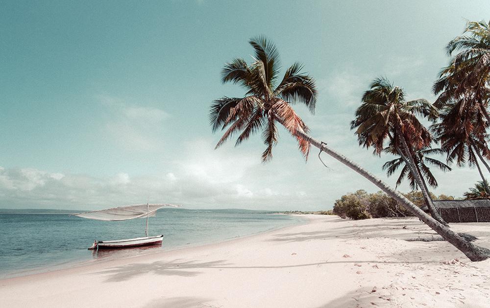 Rejser til det sydlige Afrika | Mozambique | Rejsecenter Djursland