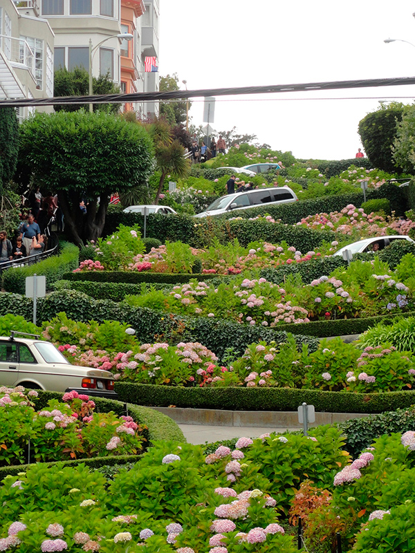 Lombard Street SF - Californien Rundt