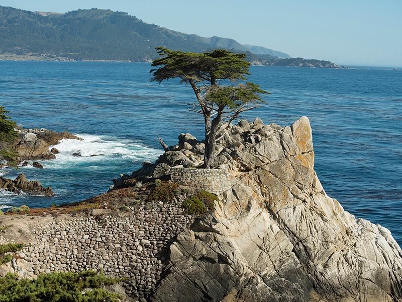 Pebble beach - Kør selv i USA